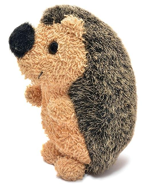 Horace's Hedgehog